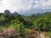 Green island Ko Phaluai