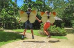 Butterfly Conservatory Bohol